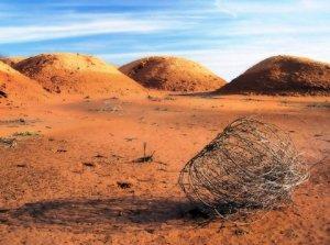 desert-1.jpg?w=300&h=224